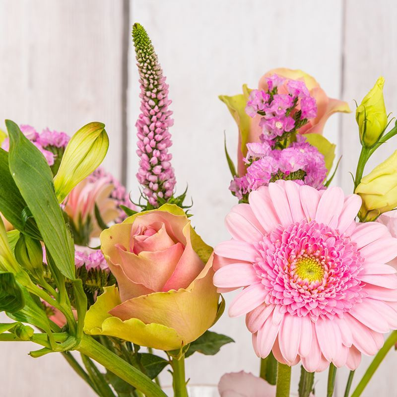 Roze Brievenbusbloemen