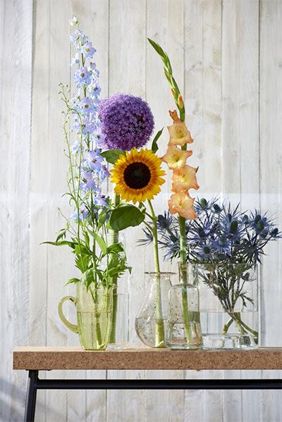 Allium Delphinium zomerbloemen