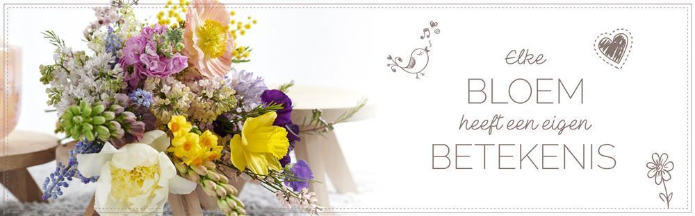 Bloemen betekenis header