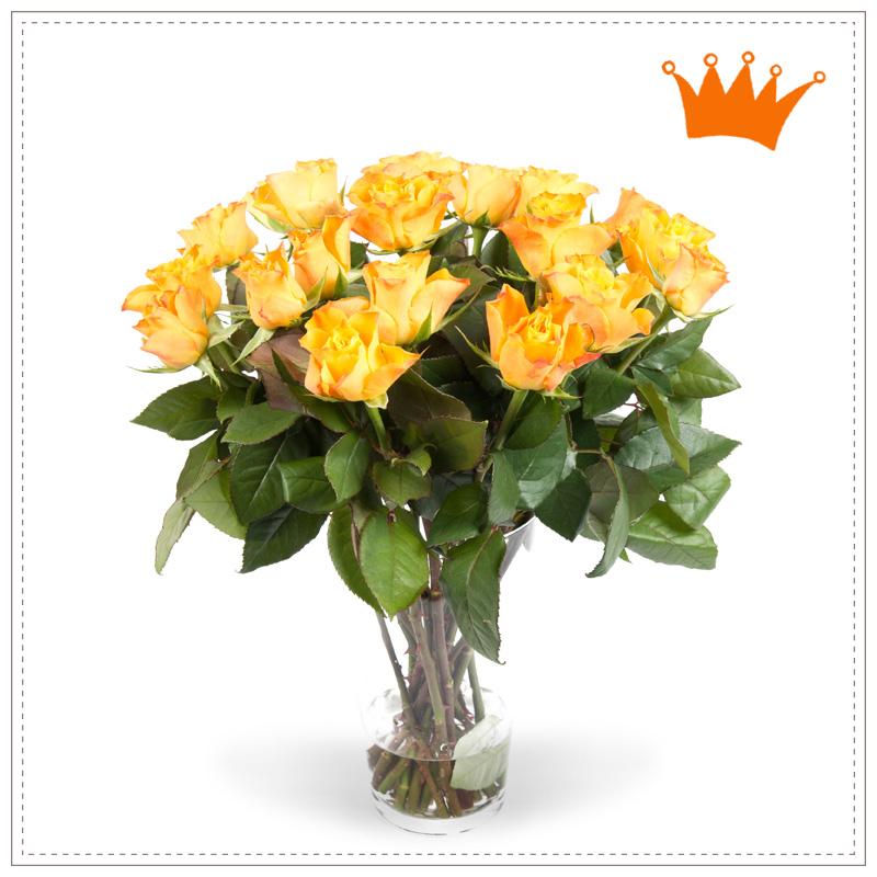 Oranje Rozen Koningsdag