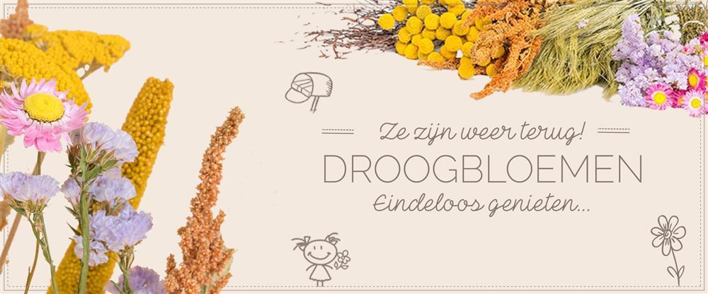 Banner droogbloemen