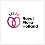 Logo Royal FloraHolland