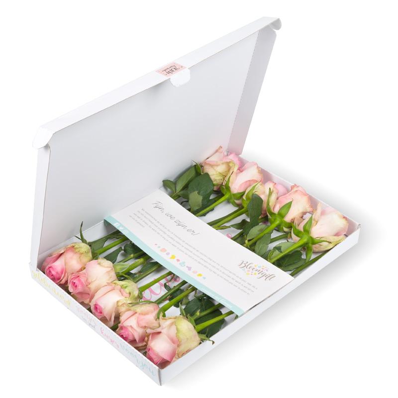 Brievenbusrozen roze