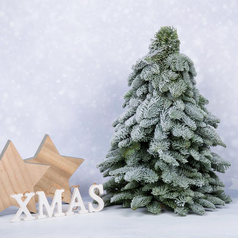 Kerstboompje met sneeuw