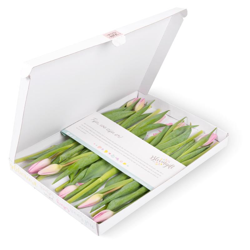 Tulpen roze brievenbus