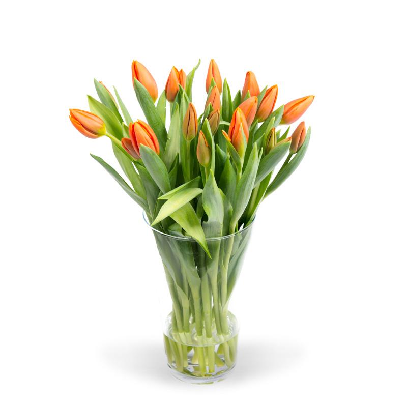 Tulpen oranje in vaas