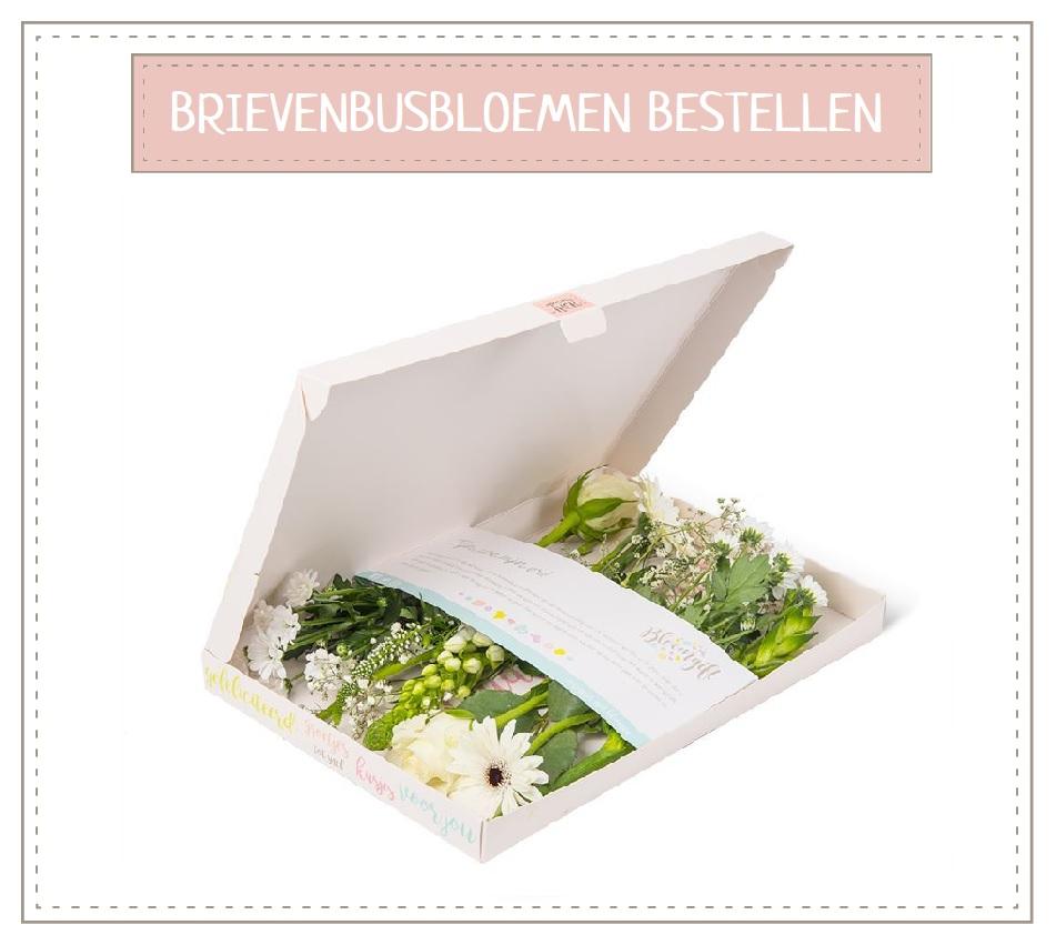 Brievenbusbloemen bestellen