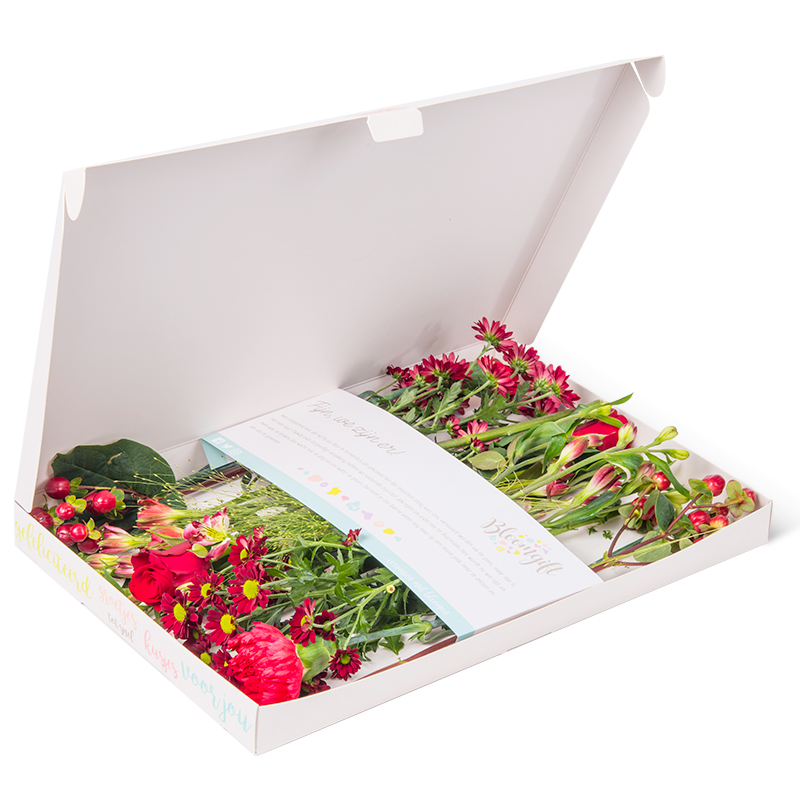 Gemengde brievenbusbloemen rood